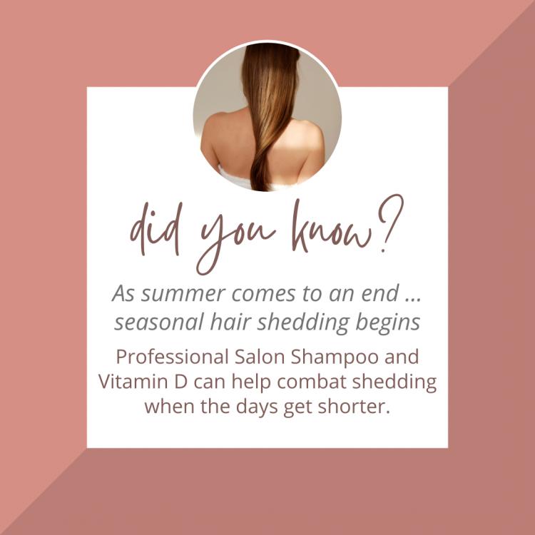 Hair Artists - Autumn Hair Tip